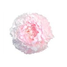 Thumbnail of paeoniae Chiffon Parfait - Parfum Parfait